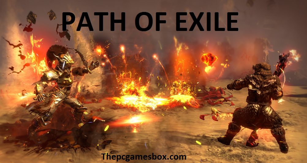 Path Of Exile For PC